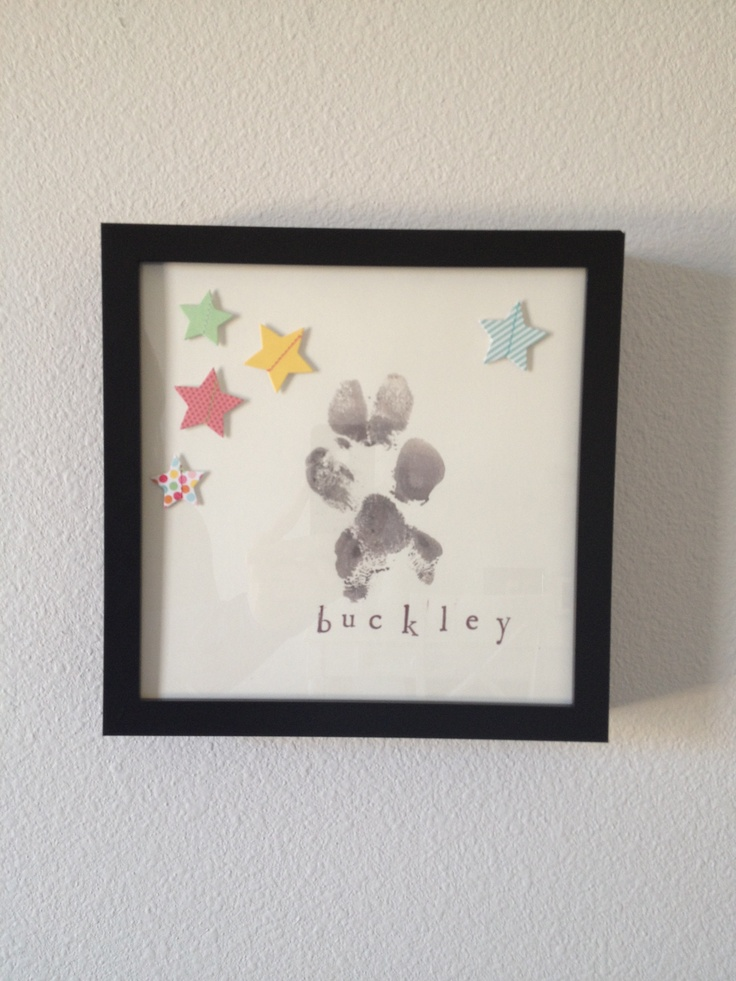 Dog Paw Print Shadow Box- repin unless you want to die tomorrow