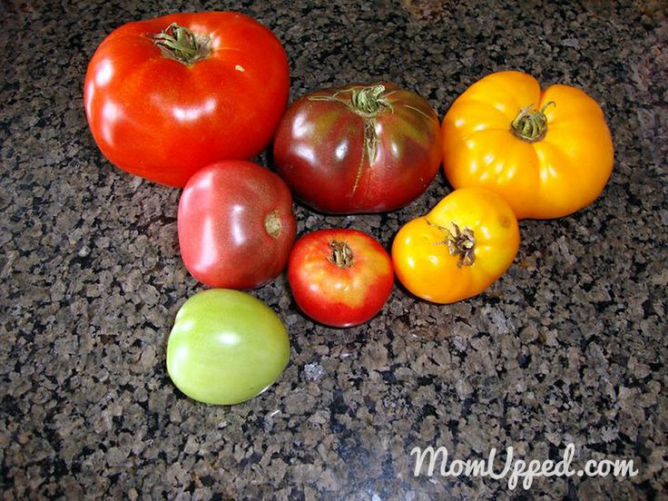 Specialty heirloom tomatoes in different colors grown in our home garden.  http://www.momupped.com/growing-veggies.html