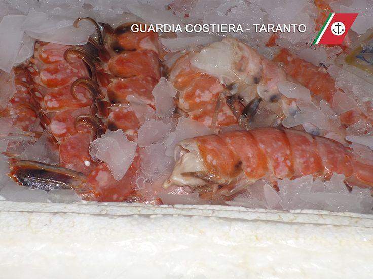 Pesce mal conservato, guai per nota pescheria di Taranto