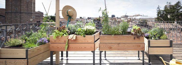 L'orto su ruote portatile  Un orto su ruote: da coltivare in città, sul terrazzo di casa o dove si vuole. http://www.cosedicasa.com/lorto-su-ruote-portatile-54746/
