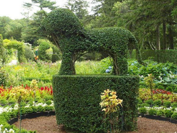 Green Animals Topiary Garden - Wikipedia