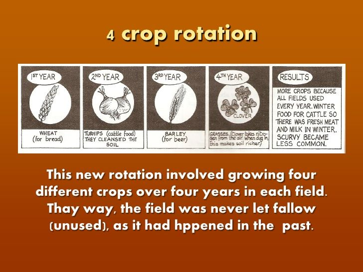 Crop Rotation - Define crop rotation in your own words on ...