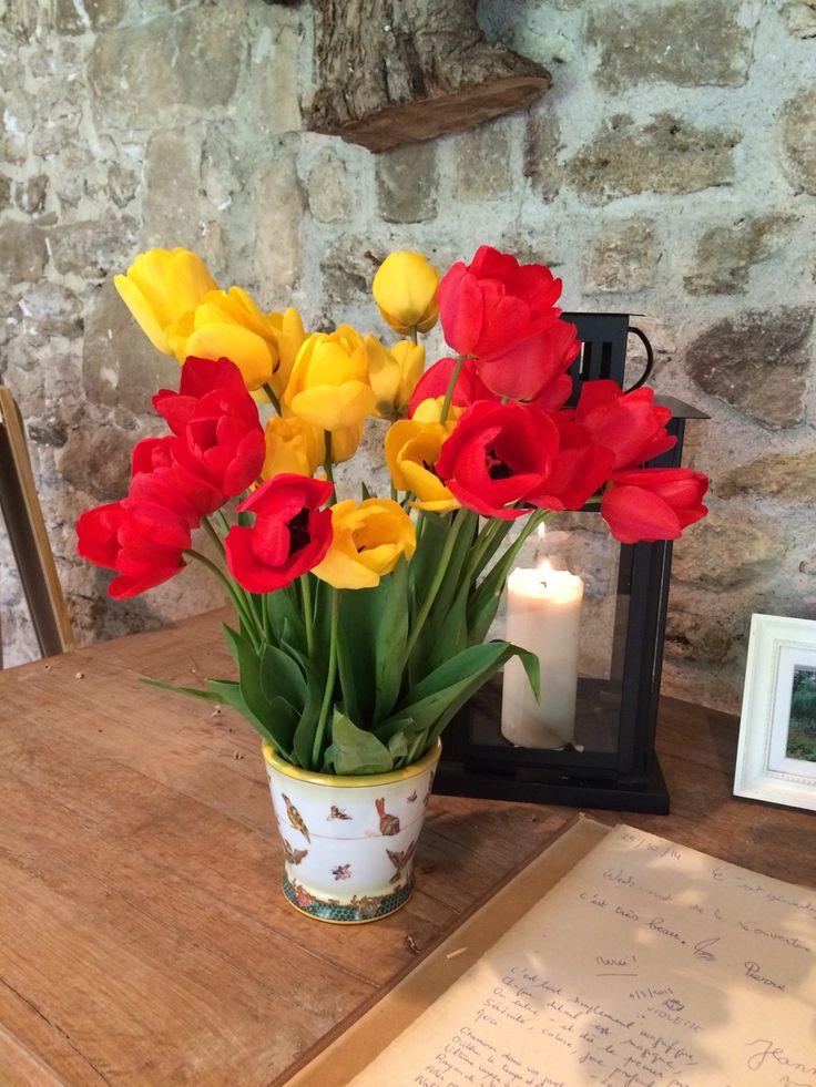 Tulipes à la Foulerie
