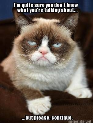 17 Best images about Tarder Sauce, the Grumpy Cat on ...