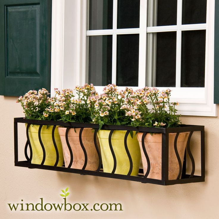 A modern take on the window box! #flower #garden #planting #modern #summer windowbox.com