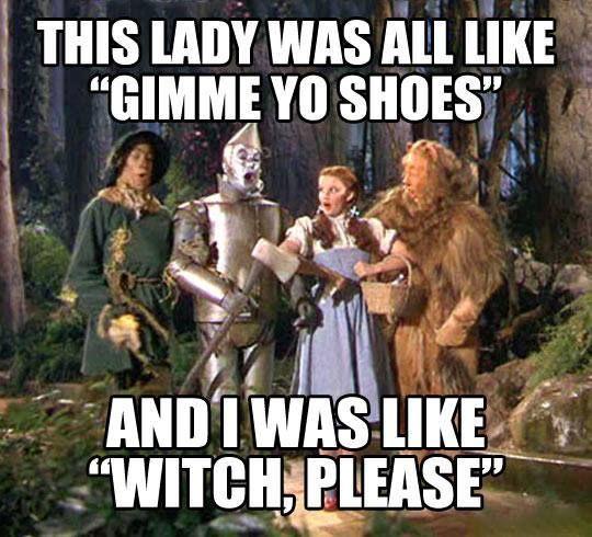 Funny Wizard of Oz meme - http://jokideo.com/funny-wizard-of-oz-meme/
