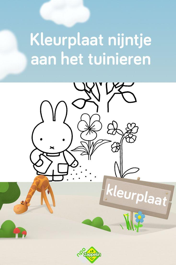 Kleurplaat Nijntje Aan Het Tuinieren Kleurplaten Kinderkleurplaten Prints