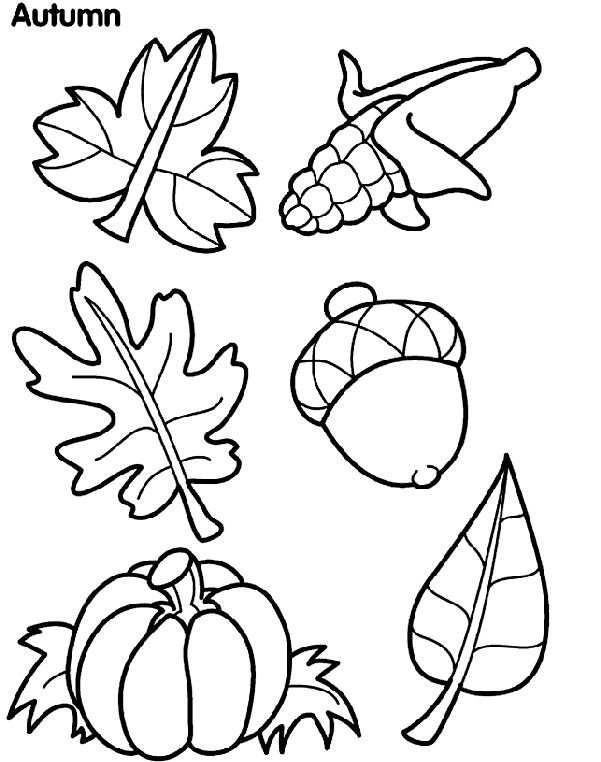 FREE Crayola Autumn Leaves coloring page... AND TONS MORE!