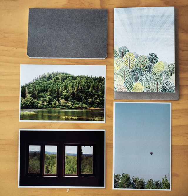 Beautiful weekend to be out among the trees! #livethelittlethings #inspiration #seekthesimplicity #nothingisordinary #nature #trees #eco #sustainable #stationary #greetingcards #photography #lawranceandpiez