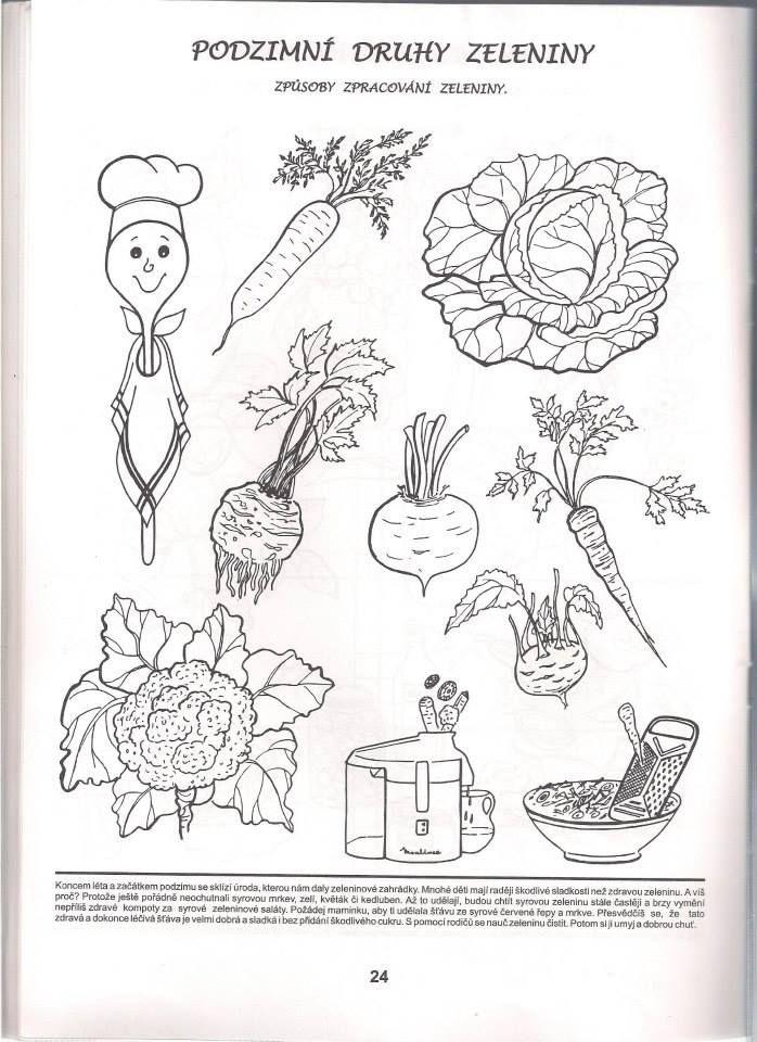 zelenina a zpracování