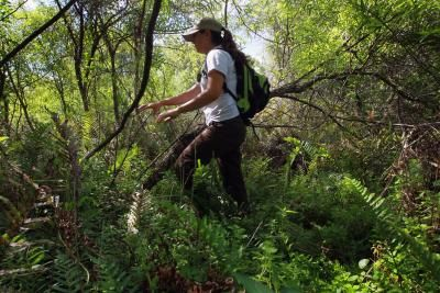 What Majors Can You Get a Degree in to Become a Wildlife Biologist?