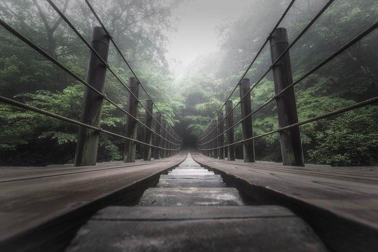 いいね!922件、コメント18件 ― Takayuki Koikeさん(@taka9xx)のInstagramアカウント: 「. . 撮影地 : 茨城県高萩市 . 雨上がりの汐見滝吊り橋 . #茨城 #高萩 #花貫渓谷 #汐見滝吊り橋 #吊り橋 #雨上がり #霧 #foggy #suspensionbridge…」