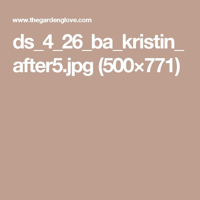ds_4_26_ba_kristin_after5.jpg (500×771)
