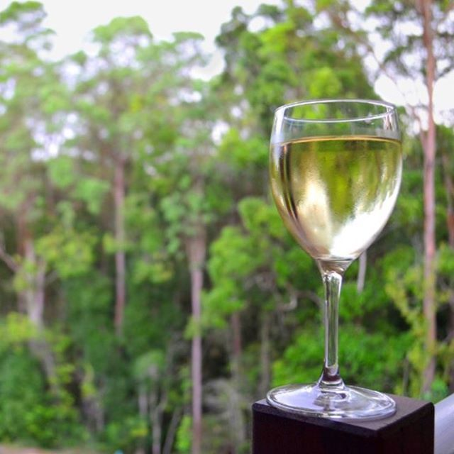 Ending the day with a glass of wine and spectacular hinterland views... Sounds like the perfect afternoon to us! This shot was captured in Eumundi, a charming historic town situated amongst towering heritage listed fig trees and home to the world famous Eumundi Markets.