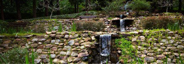 Araluen Botanic Park, Perth Western Australia