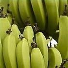 #9 Bananas