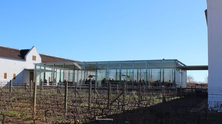 Wine tasting at Babylonstoren - glass walls let in natural light and give you a view over a vineyard block.