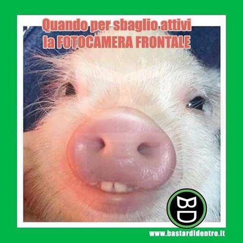 #fotocamera #faccia #bastardidentro #tagga i tuoi amici e #condividi le risate! www.bastardidentro.it