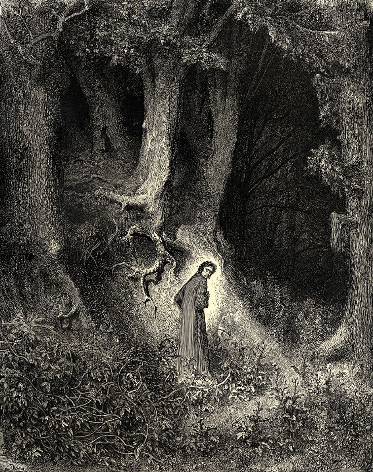 """In my midlife, I found myself in the middle of a dark forest"" by Gustave Dore (1832-1883) #classic #dark #forest"