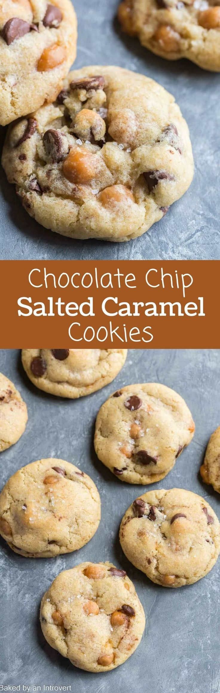 Soft and chewy Chocolate Chip Salted Caramel Cookies combine everyone's favorite flavors!  via Baked by an Introvert