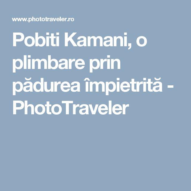 Pobiti Kamani, o plimbare prin pădurea împietrită - PhotoTraveler