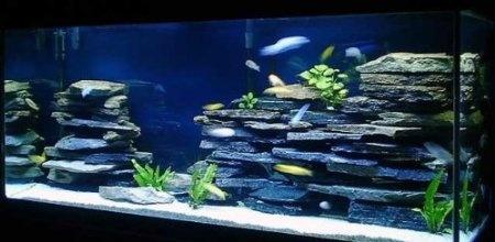 100% Natural Organic Aquarium Cave Rock Wall Decoration Aquascape Kit ...