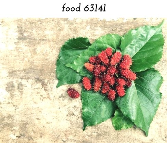Food 63141 1360 20180909090122 59 Food Dehydrator Machine India