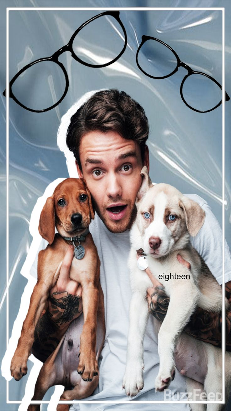 Liam Payne and Dogs