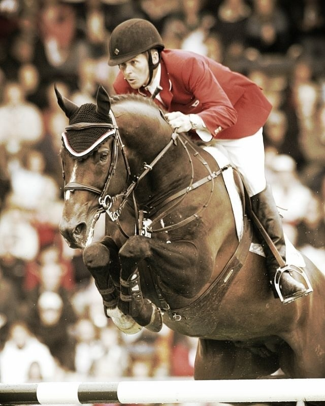 Hickstead the greatest horse that ever lived!