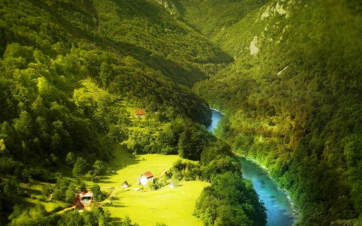 Yeşil Orman Mavi Akarsu ve Evler