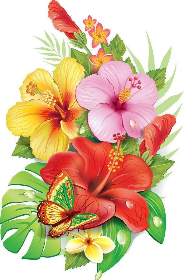 цветы и бабочка, оригинал