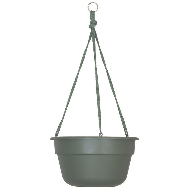 12 in. Living Green Dura Cotta Plastic Hanging Basket (12-Pack)