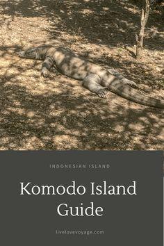 Komodo Island Guide: Island in Indonesia