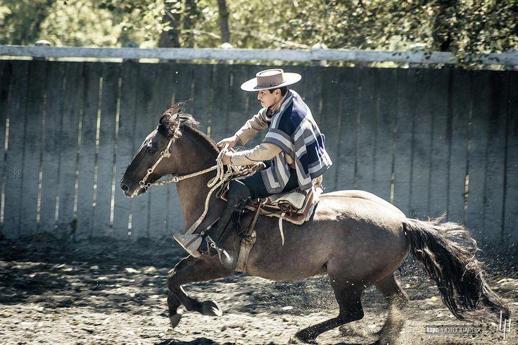 Un huaso en el rodeo | Fogón Los Alerces | 152chl américadelsur chile…