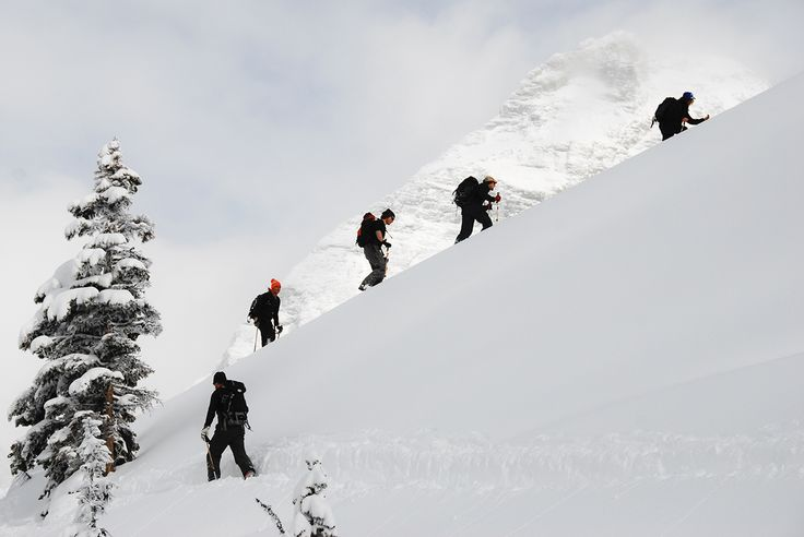 Winter excursions in Golden, BC.