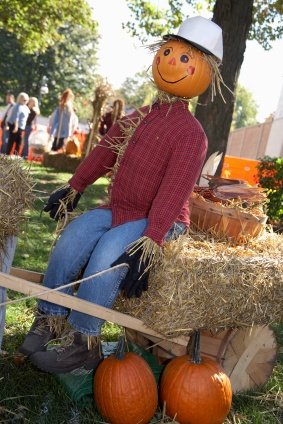 104 Best Scarecrows Images On Pinterest Scarecrows