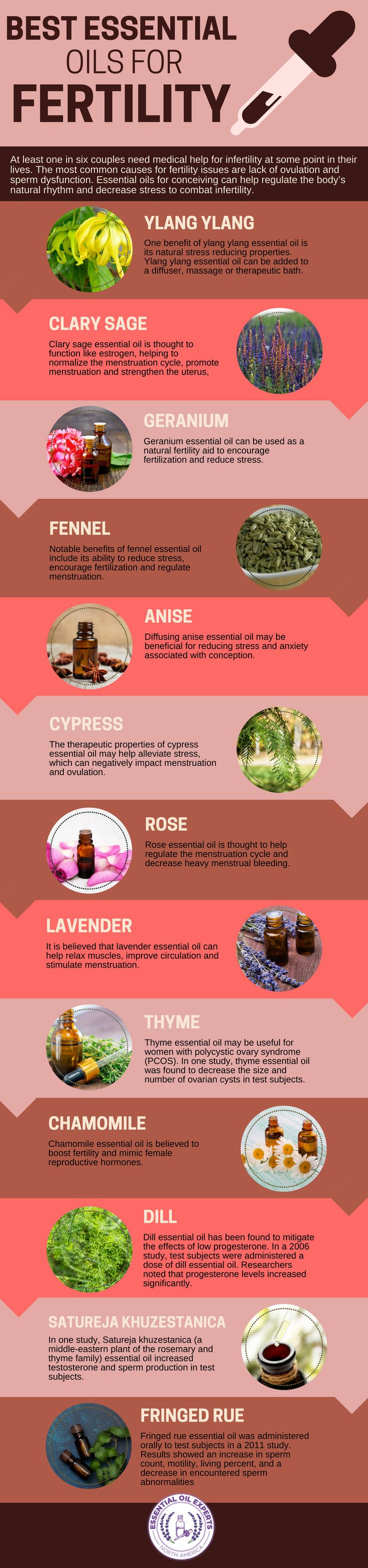Essential Oils for Fertility: Pregnancy, PCOS, Progesterone & Male Infertility