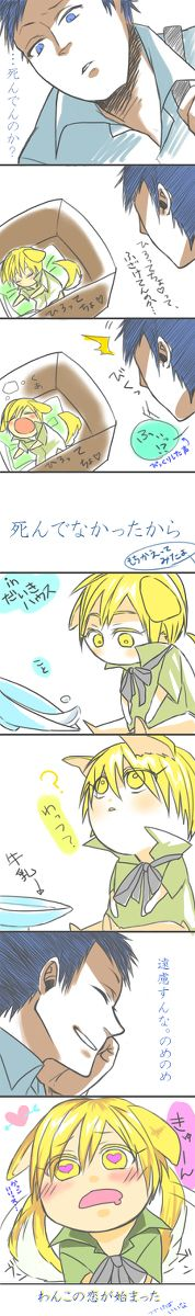 Puppy Kise and Aomine .. KnB