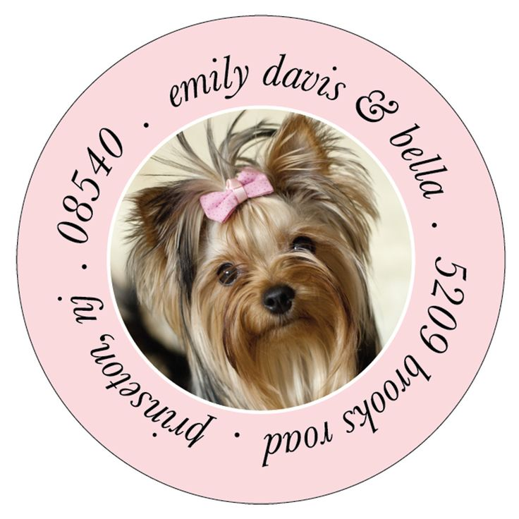 28 best easter gifts for pet lovers images on pinterest pet send your valentines in style with these personalized dog address labels they also make a great valentines day pet lovers gift negle Images