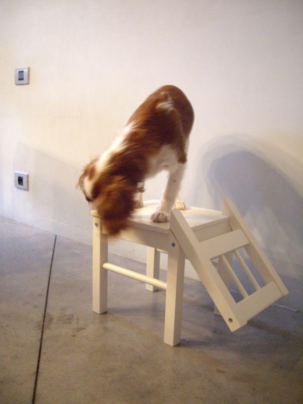 IKEA Hackers Dog chair DOGGIE
