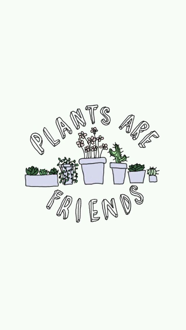 plants are friends phone background wallpaper pinterest rachae1isabe11a cute art pinterest. Black Bedroom Furniture Sets. Home Design Ideas