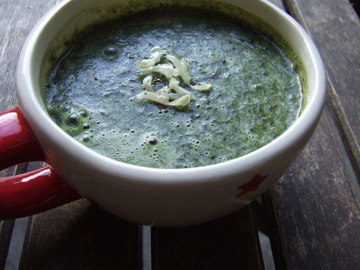 White dead nettle soup simple yet delicious wild for Simple yet delicious dinner recipes