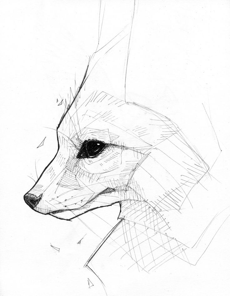 Fennec Fox - Ink by Bluecrow10.deviantart.com on @DeviantArt