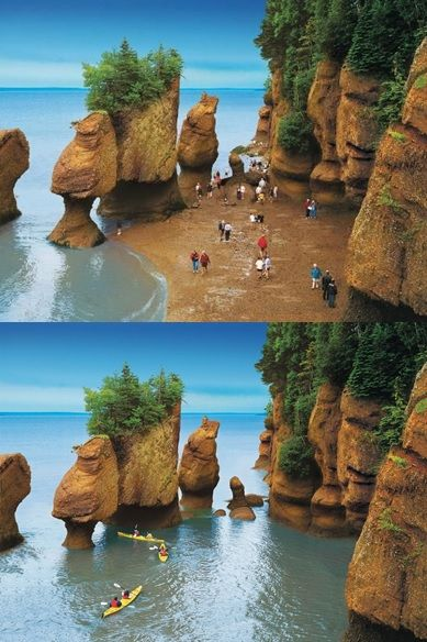 "Hopewell Cape, New Brunswick. The Hopewell Rocks (aka The Flowerpot Rocks) are located on the shores of the Bay of Fundy at Hopewell Cape. This attraction is one of the Marine Wonders of the World, and is the site of some of the World's Highest Tides. Tides as high as 50' in the Bay of Fundy create these formations that appear as island at high tide. Sea kayaking/canoeing is popular during high tide. At low tide, you can walk on the seafloor among the ""flower pots""."