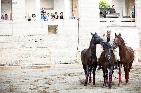 Globalist.it | Saga, il miracolo del Teatro equestre barbarico montano