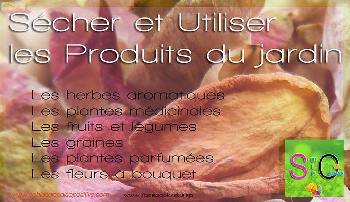So Bio, So Local, So Positive | Sécher et utiliser les produits du jardin : Tout savoir !