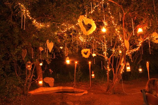 Bushveld Wedding Tree decor