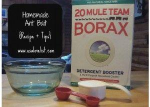 DIY Ant Bait with #madeinUSA Borax