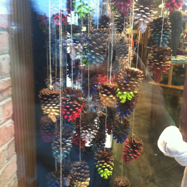 hanging paint-dipped pine cones ! saw these in a store front in Rehobeth. So cute and easy!!