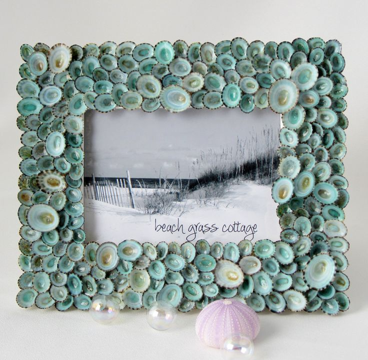 Beach Decor Aqua Limpet Shell Frame - Nautical Decor Seashell Frame of Aqua Limpets, 5x7 by beachgrasscottage on Etsy